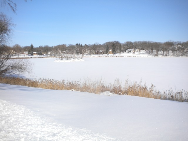 LAKE ALICE IN WINTER